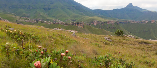 Maputsoe is a town located in the northern district of Leribe in Lesotho; it shares a border-post with Ficksburg in the eastern Free State. With a population of 36,200 it is the largest city in Lesotho not to be a camptown